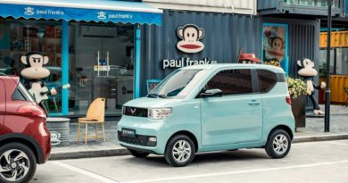 Wuling Hong Guang MINI EV Sales Exceed 33,000 In November