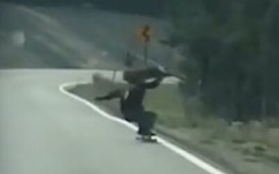 VIDEO: Longboarder Collides With Deer At Full Speed